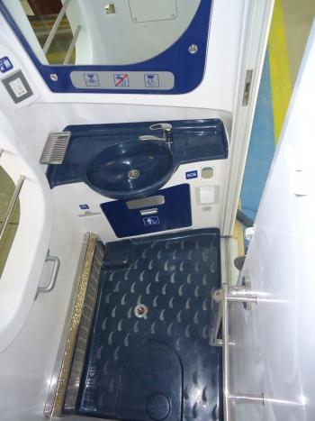Kryukov Toilet Standard